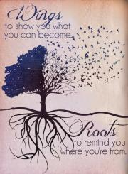 roots and wisdom